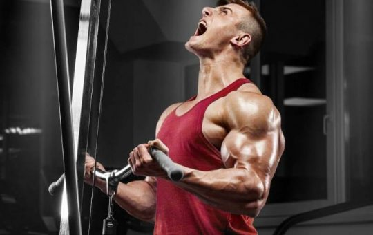 Plan for Building Muscle Mass